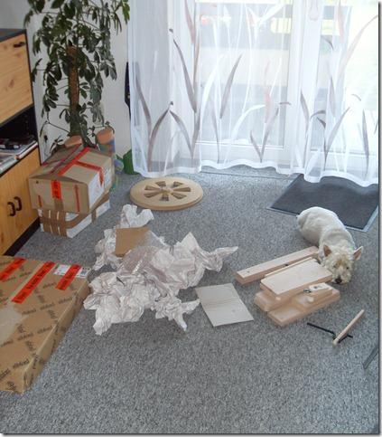 2011_08 Mein Kiwi kommt an (2)