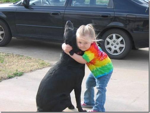 abbeydog