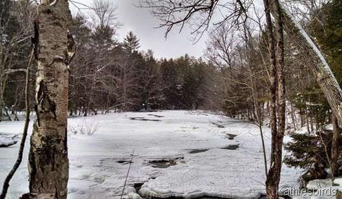 8. river view 1-16-15