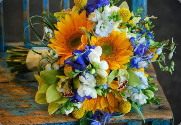 sunflower 598898_502631596414654_1143852333_n cebolla
