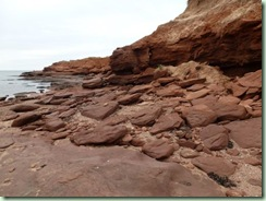 PEI Cavendish shore