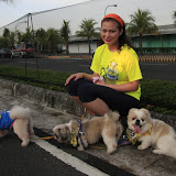 Pet Express Doggie Run 2012 Philippines. Jpg (103).JPG