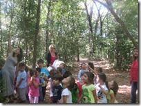 εκδρομή στο δάσος (3)