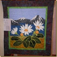 Mountain Daisies Angela