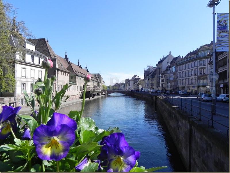 Strasbourg Paisagem típica de Strasbourg