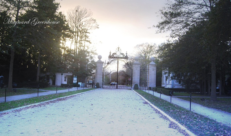 gate inside