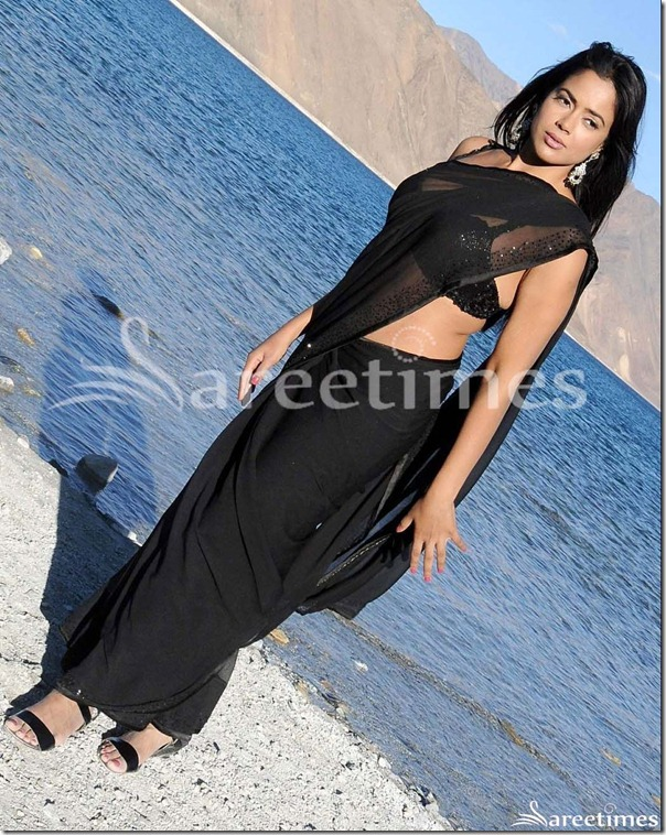 Sameera_Reddy_Black_Designer_Georgette_Saree