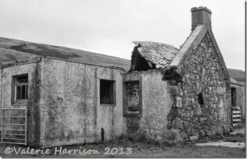 11-derelict-cottage