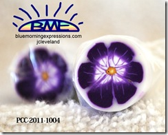 PCC-2011-1004