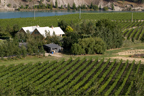 Central Otago Pinot Noir surrounds Bald Hills homestead