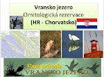 Vransko jezero - Ornitologická rezervace (HR - Chorvatsko)