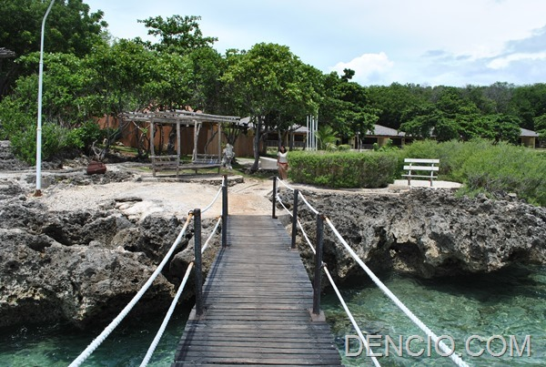 Bluewater Sumilon Island Resort  (12)