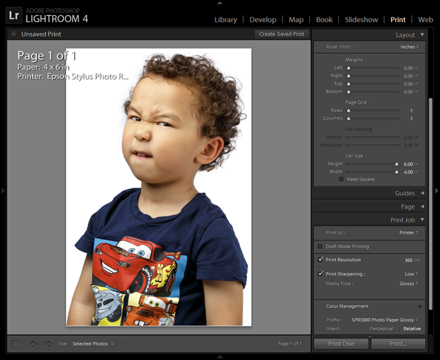 Epson R3000 4x6 Borderless Print Settings for Lightroom