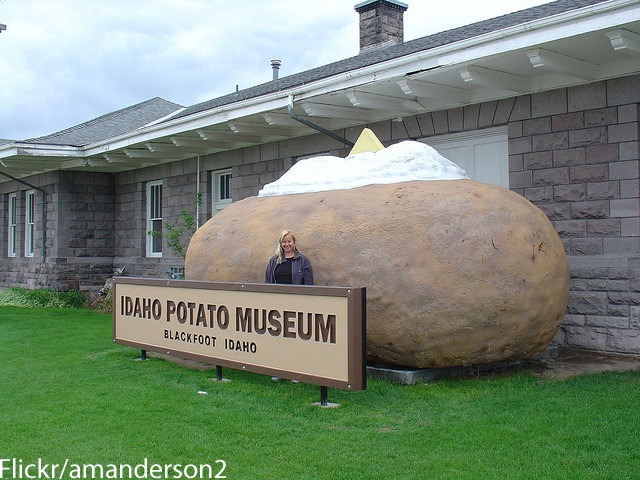 potato_amanderson2 copy
