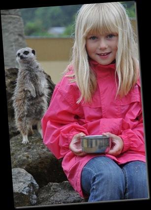 Emily feeding Meerkats DSC_2154