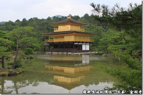 日本奈良京都大阪之旅-金閣寺,正式名稱為「鹿苑寺」,由於寺的外面全部貼滿了金箔,故稱之為「金閣寺」。