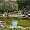 2015 03 01 piscine bois modern pool (288).jpg