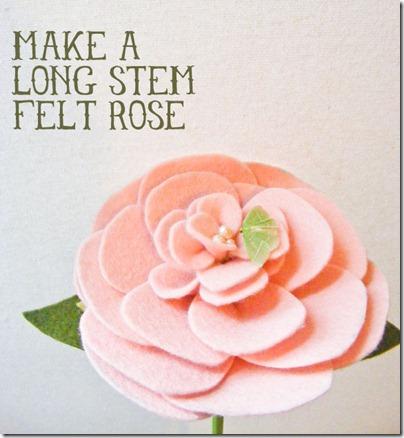 rose_lead