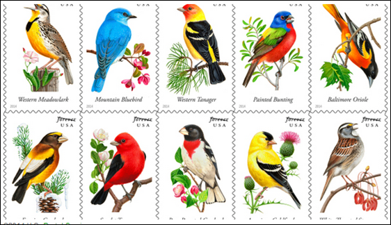 song birds on new stamps from usps