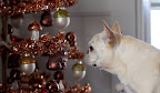 I love the ornaments on this copper tinsel tree.  In addition to bears, there are woodland mushrooms and glittered acorns.