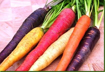 Cenoura Rainbow