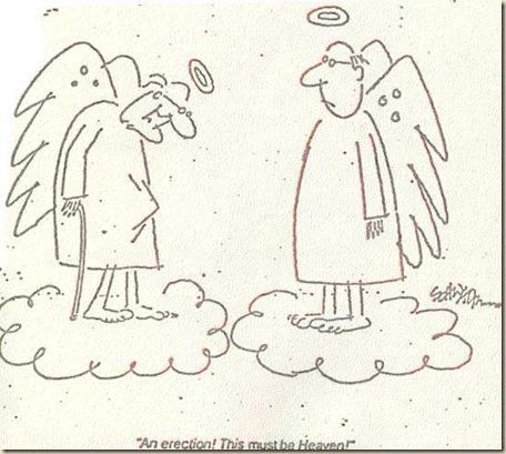 heaven paradise atheism god bible jesus humor (40)
