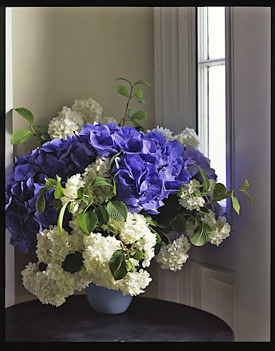 Flowers are another beautiful way to add blue to a room.