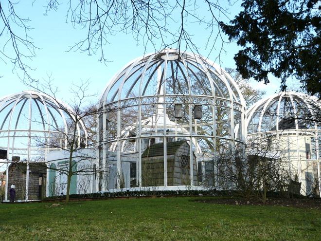 Ботанический сад в Бирмингеме, клетки с птицами