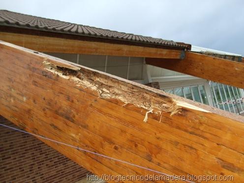 reparacion madera (1)