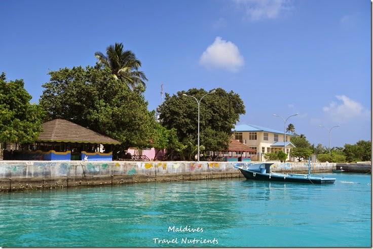 馬爾地夫居民島Mahibadhoo- Amazing Guesthouse (12)