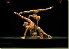 acts_contorsion[8]