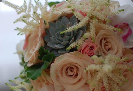 384763_10150933594705957_1416339244_n flora bella