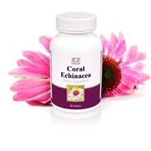 Coral Echinacea / Корал Эхинацея