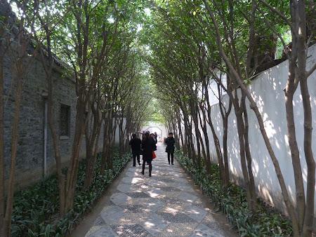 Obiective turistice Yangzhou: Gradina Ge