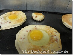 bacon n eggs griddle cakes  - The Backyard Farmwife