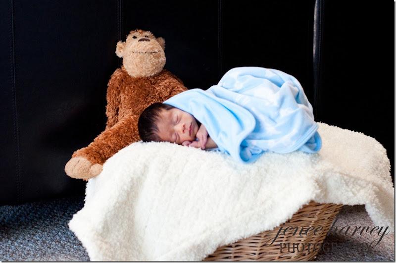Baby Roman-49