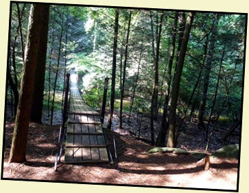 06 - Suspension Bridge across Byrd Creek