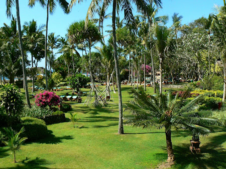 Hotel Hyatt Sanur: the garden
