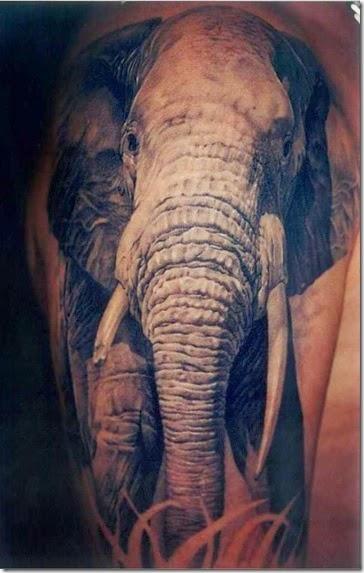 awesome-elephant-tattoos-058