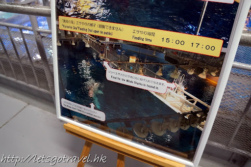 20111228okinawa610.JPG