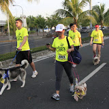 Pet Express Doggie Run 2012 Philippines. Jpg (101).JPG
