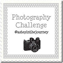photo_challenge_button_2