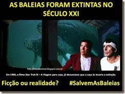 baleias-star_trek01_thumb[1]