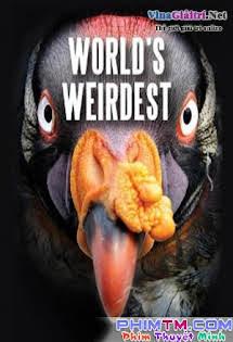 Những Sinh Vật Kì Lạ Nhất Thế Giới - World's Weirdest