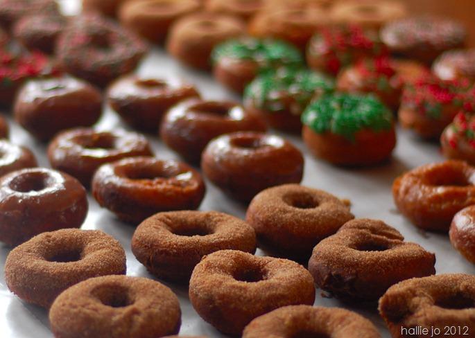 Donut18