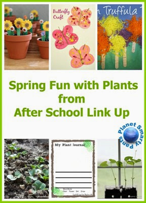 Spring Fun With Plants