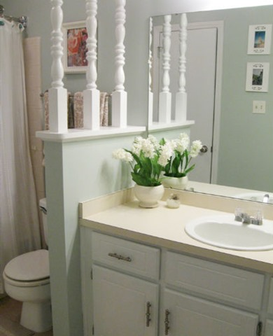guest bathroom - fsbo