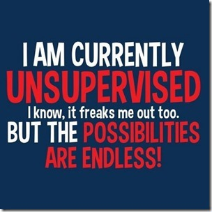 currently unsupervised