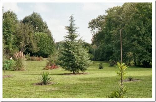 Hameau de LANNES, chez Vincent & Nadya: le jardin