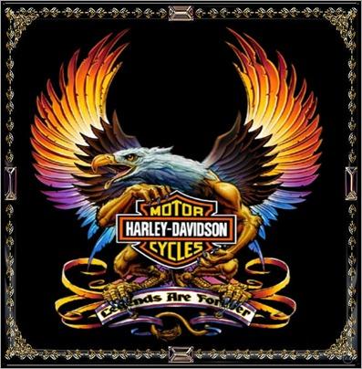 harley-davidson-bird-image_428449544